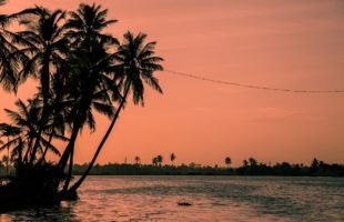 Top beaches to visit in Kochi